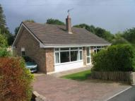 3 bed Detached Bungalow in Moorham Road, WINSCOMBE
