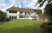 6 bedroom Detached house for sale in Bayham Road...
