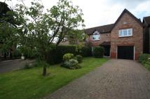 4 bed semi detached property to rent in Hayside Walk...