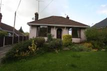 Detached Bungalow in Winsgate, Chester Road...