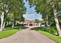 5 bedroom Detached property for sale in Arrowsmith Road...