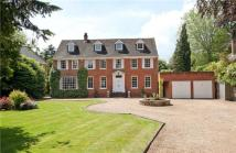 7 bedroom Detached property in Fishery Road, Maidenhead...
