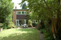 Detached property for sale in Lower Sunbury