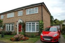 3 bed semi detached house in Hampton Hill