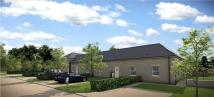 4 bedroom new development in Larbert House & Country...