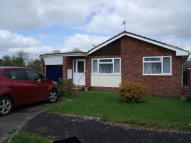 Detached Bungalow to rent in Castle Park, Hemyock...
