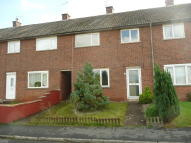 Terraced house to rent in Blackmore Road, Tiverton...