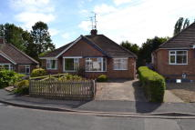 Semi-Detached Bungalow to rent in Fir Tree Walk...
