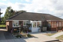 2 bed Semi-Detached Bungalow for sale in Coleford, Gloucestershire