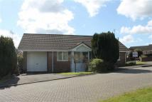 Detached Bungalow in Berry Hill...