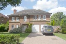 Detached property for sale in Bowen Way, Coulsdon...