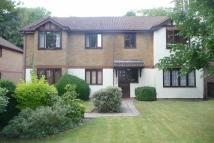 1 bed Flat to rent in 34 Brighton Road...