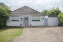 3 bed Detached Bungalow in Taunton Lane, Coulsdon