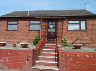 Detached Bungalow to rent in The Dales, Dovercourt...