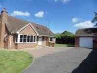 Detached Bungalow for sale in Longlevens, Gloucester