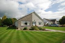 Detached Bungalow in 8 Altonhead Terrace...