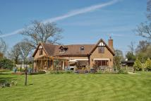 3 bed Detached house in Burley, Hampshire