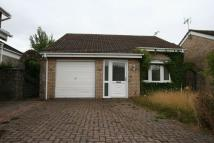 Detached Bungalow for sale in Radnor Road, Boverton...