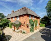 Cottage for sale in Mildenhall