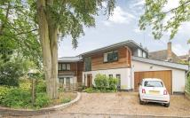 5 bed Detached house in Bute Avenue, Richmond...