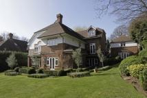 Detached house for sale in Seymour Road, Wimbledon...