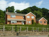 Detached house for sale in Goitre Coed Road...