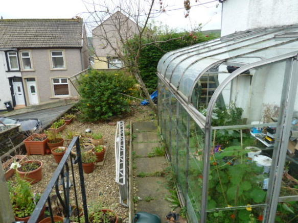 greenhouse & shrubs