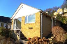 2 bed Detached Bungalow for sale in Springwood Drive...