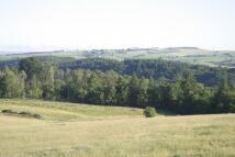 Land in Lanark Road, Braidwood...