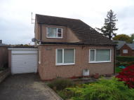 Glyn Y Marl Road Detached property to rent