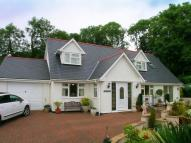 Eryr Lodge Detached house for sale