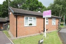 2 bed Semi-Detached Bungalow in Cheedale Close...