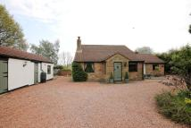 Detached Bungalow in Hardwick Road...