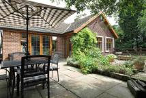 3 bed Detached Bungalow for sale in Hawthorne Close...