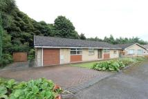 3 bedroom Detached Bungalow in Parkland Drive...