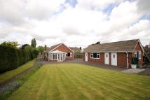 Detached Bungalow for sale in The Green, Hasland...
