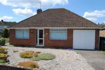 Bungalow in Chaucer Crescent...