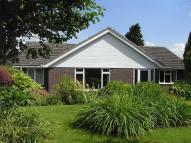 2 bed Detached Bungalow for sale in Hazeldene...