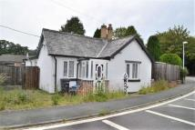 3 bedroom Cottage in Plas Llysyn Lodge, Carno...