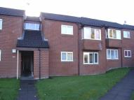 1 bed Flat to rent in 33, Pine Court...