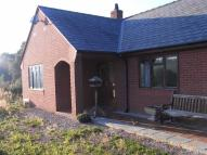 Detached Bungalow to rent in Brynderw, Welshpool...