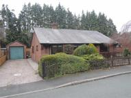 Detached Bungalow to rent in 4 Court Close, Abermule...