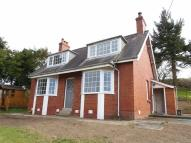Detached Bungalow to rent in Woodgreen, Kerry Road...
