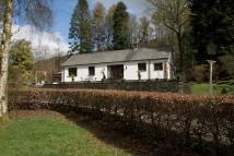Detached Bungalow in High Woods, Fell Foot...
