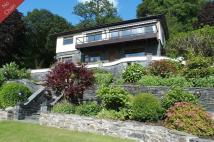 4 bed Detached house for sale in Briarswood, Fellside...