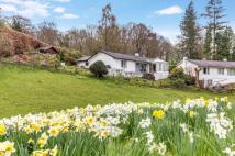 Detached Bungalow in Claife, Longtail Hill...