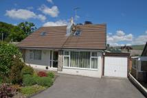 Detached Bungalow in 3 Fairgarth Drive...