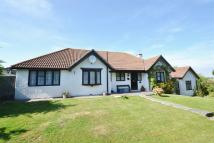 4 bedroom Detached Bungalow in Lower Willingdon