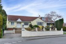 Bungalow in Somerset Close...