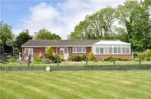 Bungalow for sale in Markfield Road, Groby...